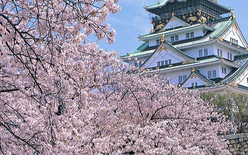 KHÁM PHÁ THỦ ĐÔ TOKYO